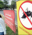 Link toOutbreak of dengue fever in Thailand