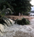 Link toFlooding in Pattaya Photos