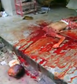 Link toThai man cuts the head off his children - warning graphic