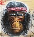 Link toChiang Mai Graffiti