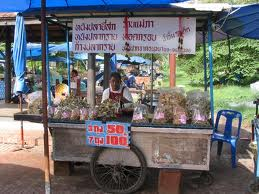 Eating On the Side of the road in Thailand