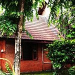 Chiang Mai House for Dreamer cheap hotel with free wifi