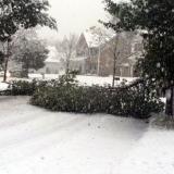 freak snowstorm in conneticut