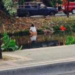 chinese takes a dump in the moat